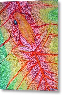 Frog On Leaf Metal Print by Nick Gustafson