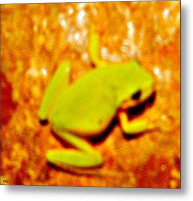 Frog On The Wall Metal Print by Debra     Vatalaro