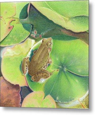 Froggie Metal Print by Elizabeth Dobbs