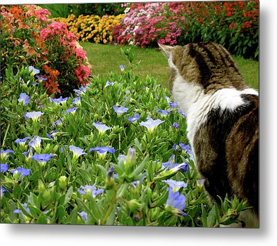 Frolic In The Flowers Metal Print