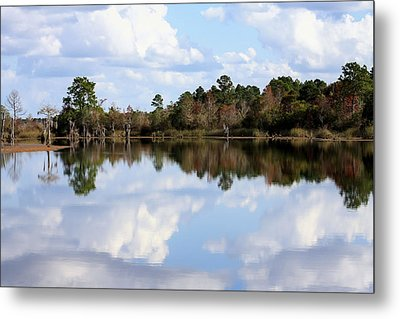 From The Lake To The Channel  Metal Print by Debra Forand