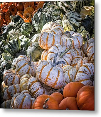 From Thy Bounty Metal Print