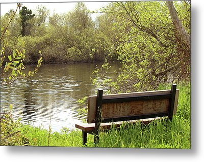 Metal Print featuring the photograph Front Row Seat by Art Block Collections