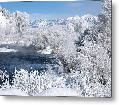 Frost Along The River Metal Print by DeeLon Merritt
