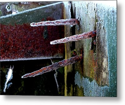 Frost And Rust Metal Print