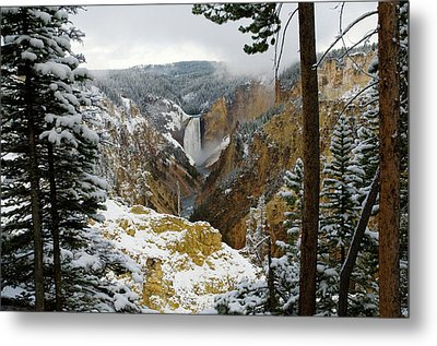 Metal Print featuring the photograph Frosted Canyon by Steve Stuller