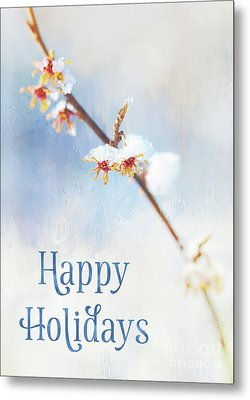 Frosted Witch Hazel Blossoms Holiday Card Metal Print