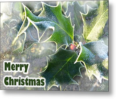 Metal Print featuring the photograph Frosty Holly by LemonArt Photography
