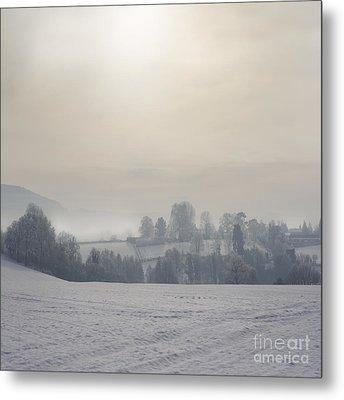Frosty Landscape Metal Print by Angel  Tarantella