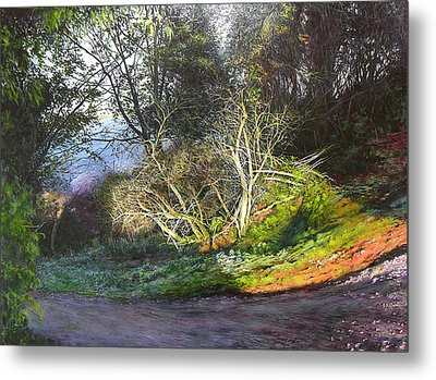 Frosty Morning Near Nant Clwyd Metal Print by Harry Robertson