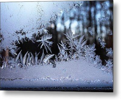 Frosty Morning Window Metal Print by Liz Allyn
