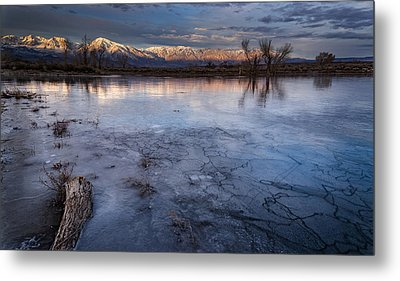 Frozen Metal Print by Cat Connor