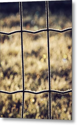 Frozen Fence Metal Print