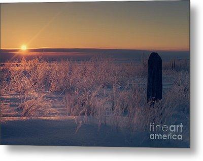 Frozen Field Sunrise Metal Print by Ian McGregor