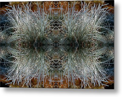 Metal Print featuring the photograph Frozen Grass Abstract by Gary Cloud