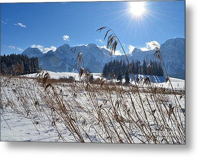 Frozen Lake And Mountains 2 Metal Print by Sabine Jacobs