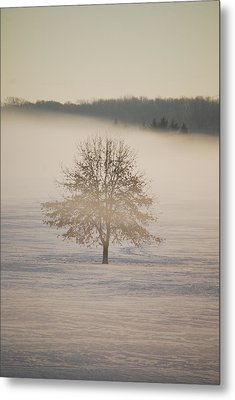 Frozen  Metal Print by Peter  McIntosh