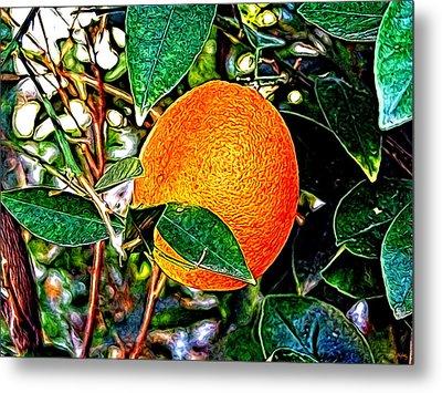 Metal Print featuring the photograph Fruit - The Orange by Glenn McCarthy Art