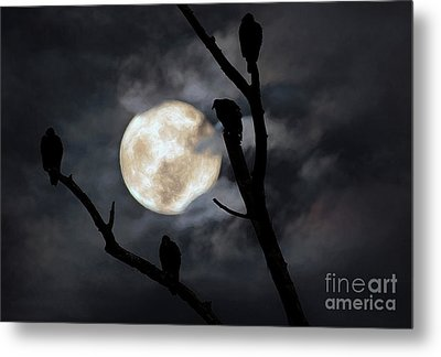 Metal Print featuring the photograph Full Moon Committee by Darren Fisher