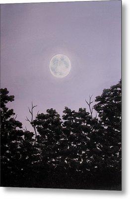Full Moon On A Summer Evening Metal Print by Anna Bronwyn Foley
