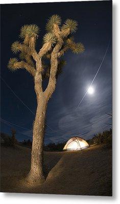 Full Moon Rising Over A Joshua Tree Metal Print by Rich Reid