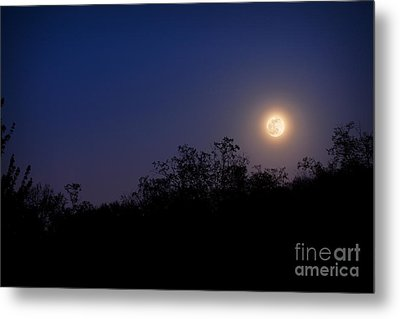 Full Moon Rising Over Trees Metal Print by Sharon Dominick