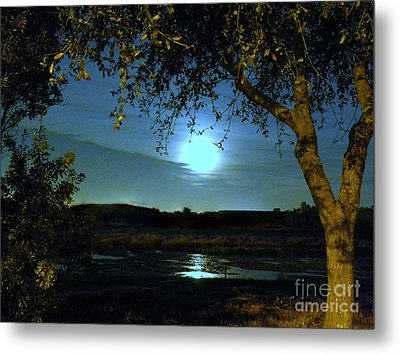 Full Moon Metal Print by Terri Mills