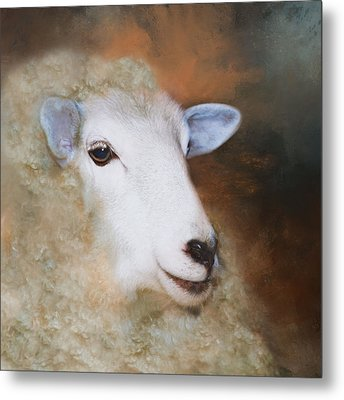 Metal Print featuring the photograph Fully Woolly by Robin-Lee Vieira