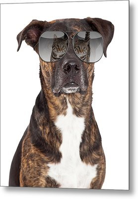 Funny Dog With Cat Reflection In Sunglasses Metal Print by Susan Schmitz