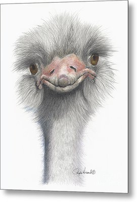 Funny Face Metal Print by Phyllis Howard