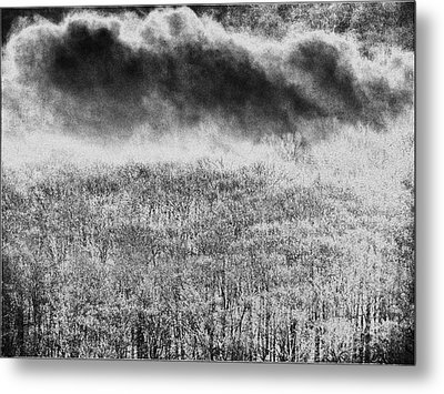Metal Print featuring the photograph Fury by Steven Huszar