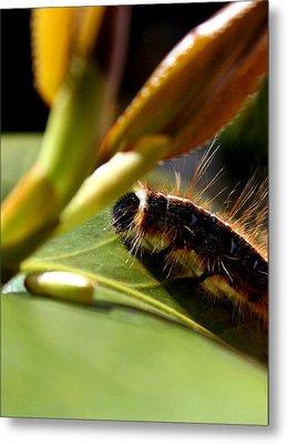 Future Butterfly Metal Print by Alexandra Harrell