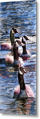 Metal Print featuring the painting Gaggle Of Geese by Jim Phillips