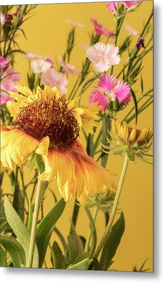 Gaillardia And Dianthus Metal Print by Richard Rizzo