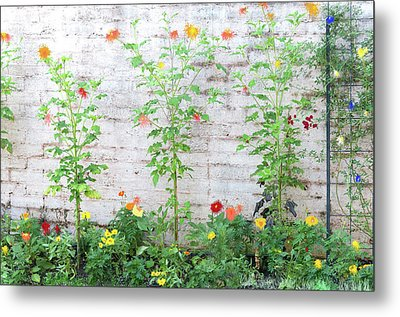 Metal Print featuring the photograph Garden Florals by Carolyn Dalessandro