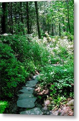 Garden In The Woods Metal Print