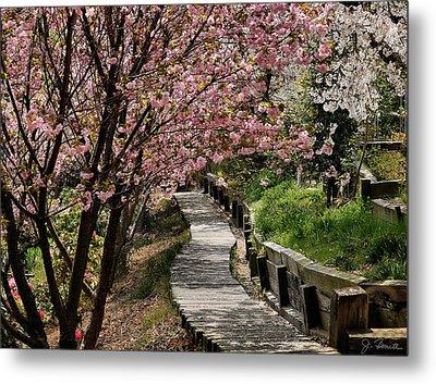Garden Path No. 2 Metal Print by Joe Bonita