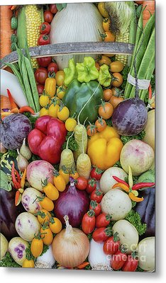 Garden Produce Metal Print by Tim Gainey