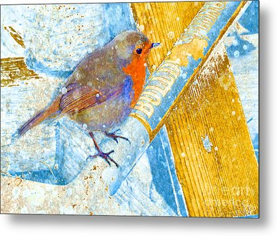 Garden Robin Metal Print by LemonArt Photography