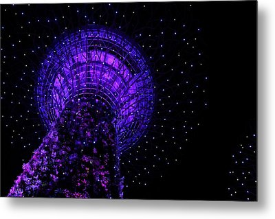 Gardens By The Bay In Singapore Metal Print by Diane Height