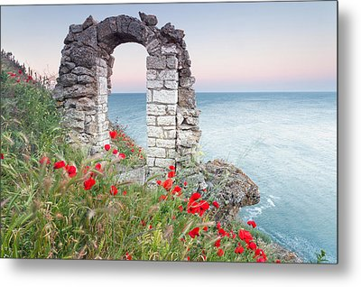 Gate In The Poppies Metal Print