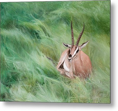 Metal Print featuring the painting Gazelle In The Grass by Joshua Martin