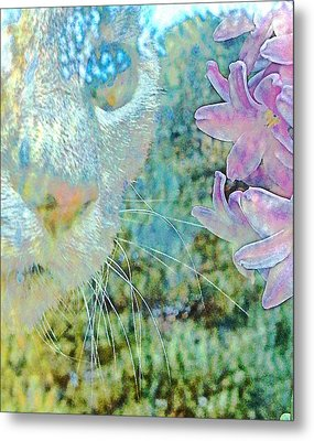Gazing Out Metal Print by Dorothy Berry-Lound