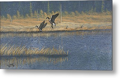 Metal Print featuring the painting Geese by Richard Faulkner