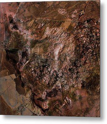 Gem 1 In Bronze Metal Print by Sean Holmquist