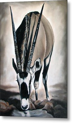 Gemsbok - Thirst Metal Print by Ilse Kleyn
