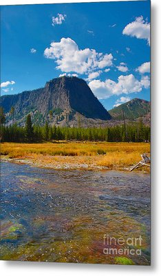 Metal Print featuring the photograph Genesis by Robert Pearson