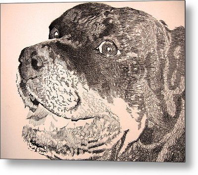 Gentle Giant Metal Print by Robbi  Musser
