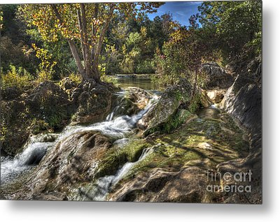 Gentle Mountain Stream Metal Print by Tamyra Ayles
