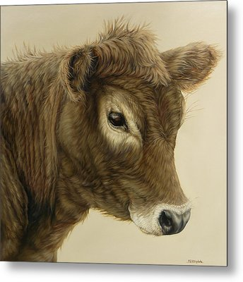 Gentle Swiss Calf Metal Print by Margaret Stockdale